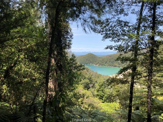 Zonnig Abel Tasman National Park