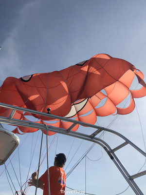 Flying Parasailing Paihia