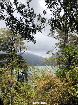 Brunner Peninsula Walk