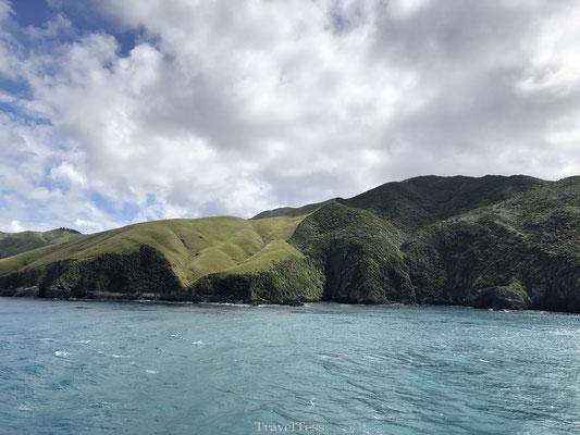 Groene baai Zuidereiland Nieuw-Zeeland