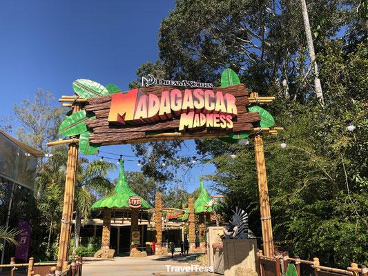 Madagascar Madness in Dreamworld