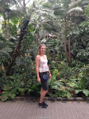 Mooie tuinen Palmgarten Frankfurt