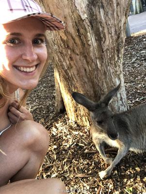 Op de foto met kangoeroe