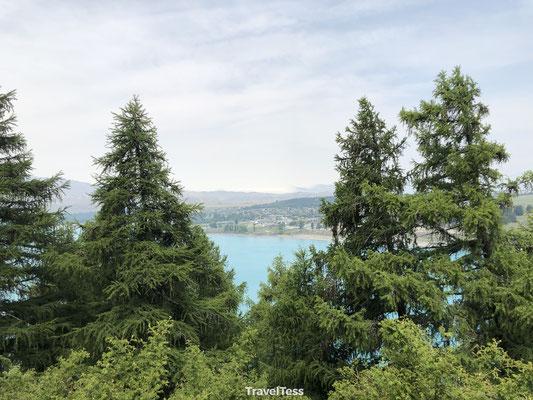 Mount John Lake Tekapo