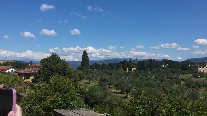 Groen gedeelte in Florence