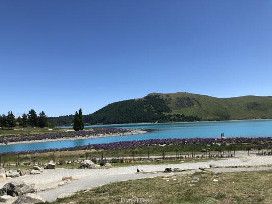 Lake Tekapo in Nieuw-Zeeland