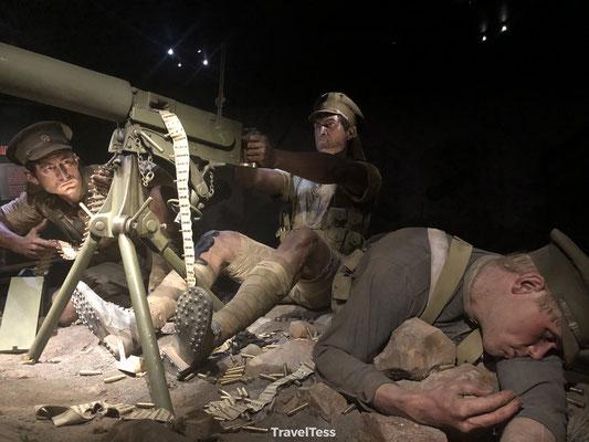 Te Papa Museum oorlogstentoonstelling