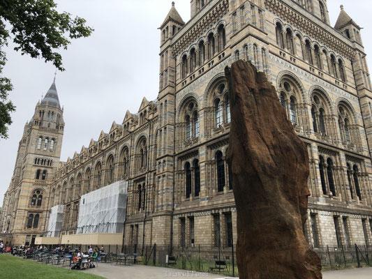 Londen Natural History Museum gebouwd