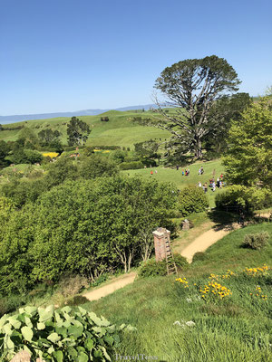 Rondleiding Hobbiton Movie Sets