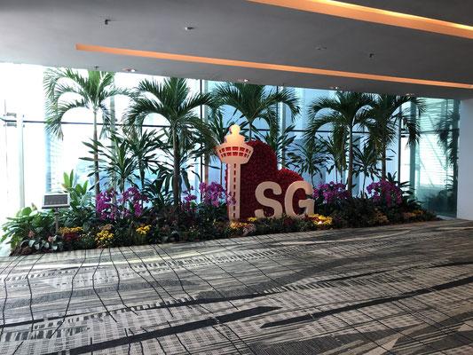 Vliegveld Singapore