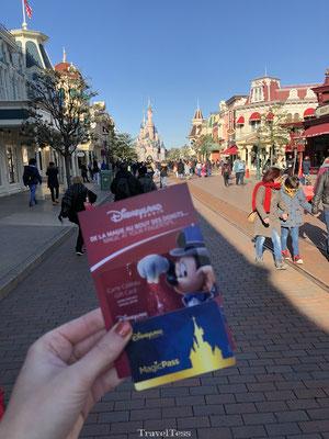 Entree Disneyland Parijs