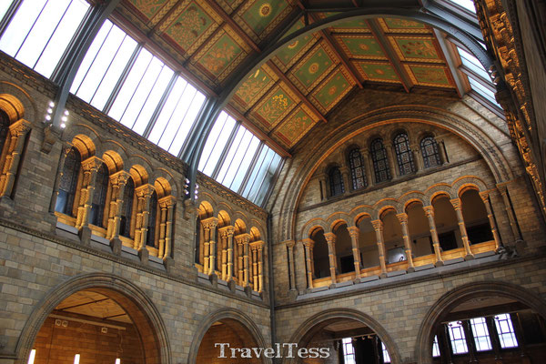 Londen Natural History Museum