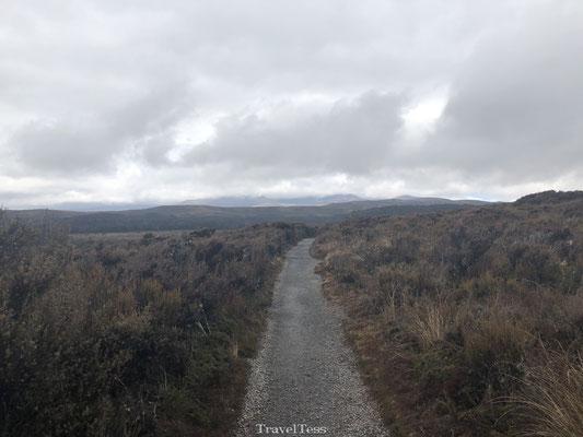 Wandelpad door Tongariro National Park