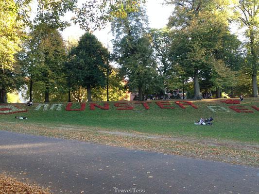 Stadspark Munster