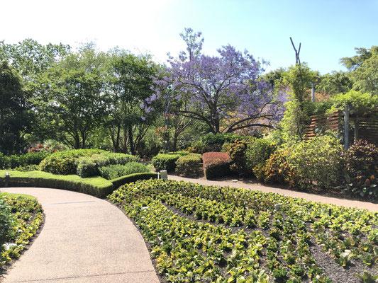 Roma Street Park Brisbane