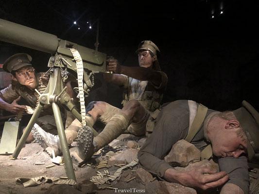 Te Papa museum oorlogstentoonstelling WOI