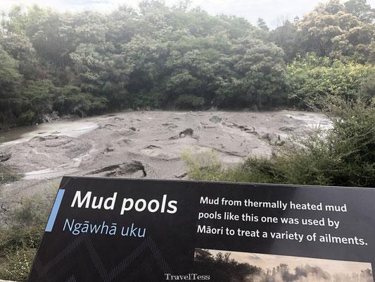 Modderpoelen in Te Puia Thermaal park