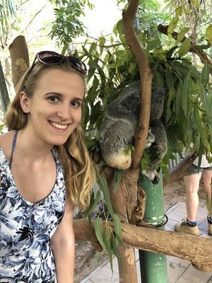 Selfie met slapende koala