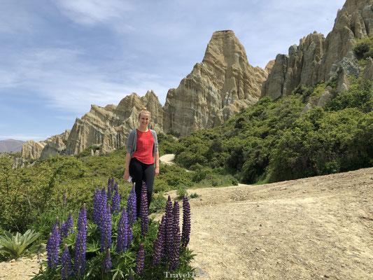 Clay Cliffs Omarama bezoeken