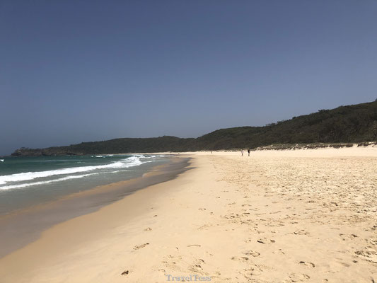 Sunshine Beach Australië