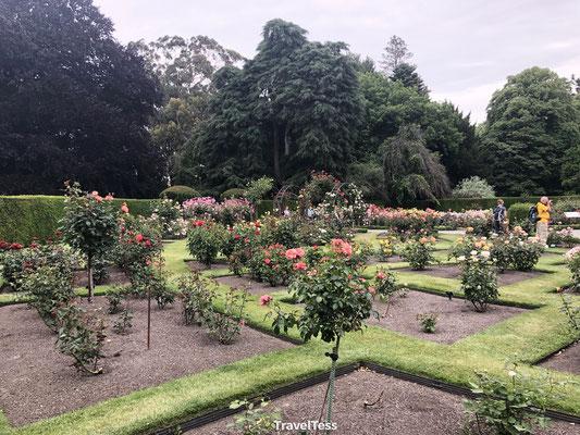 Botanische tuin Christchurch