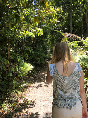 Wandelen Cape Tribulation