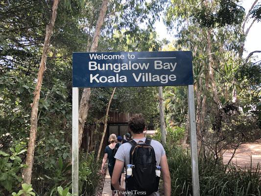 Koala Village Magnetic Island