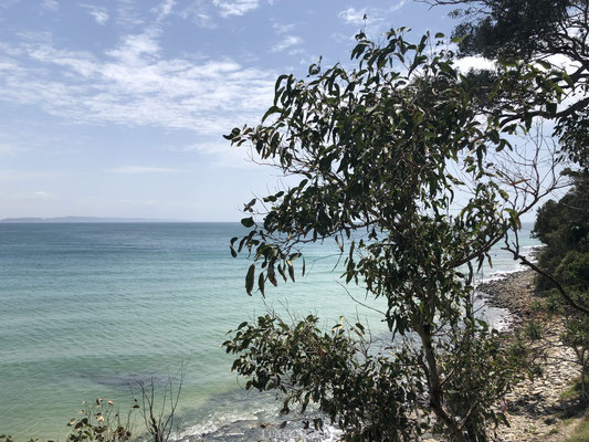 Zee bij Noosa