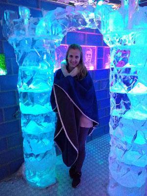 Ice Bar Boedapest bezoeken