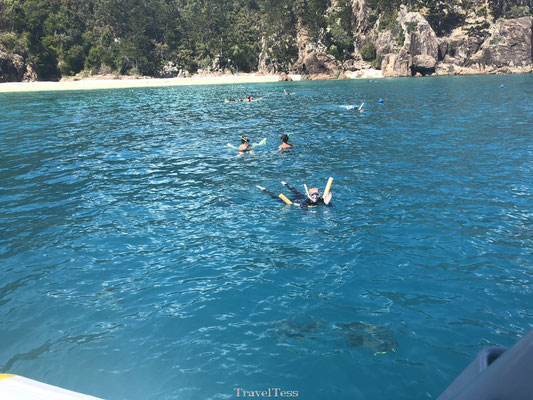 Snorkelen Whitsunday Islands