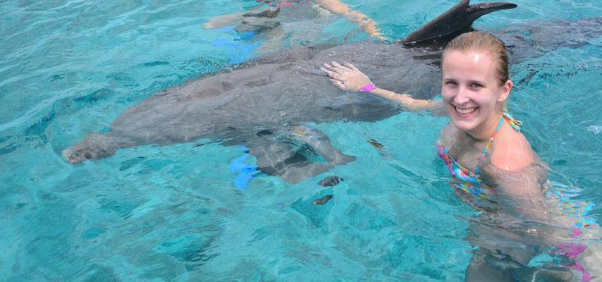 Dolphin Academy Curaçao
