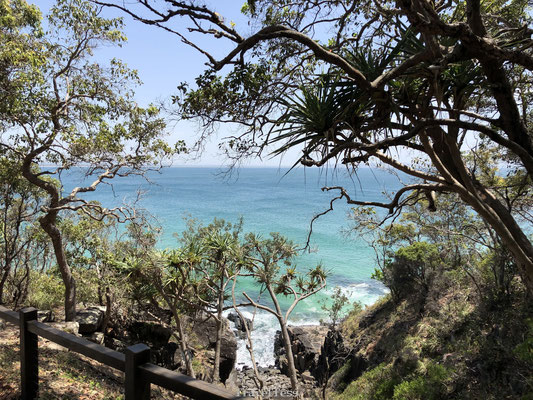 Noosa Dolphin Point Lookout