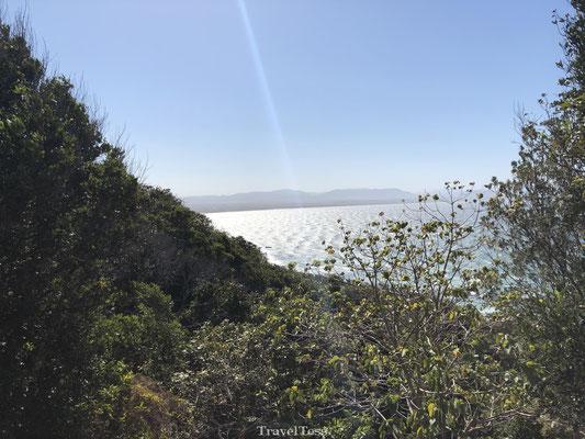 Zonnig Byron Bay