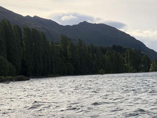 Harde wind bij Lake Wanaka