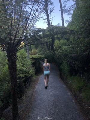 Wandelpad naar Cathedral Cove