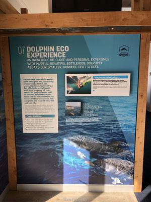 Bord met informatie over dolfijnen in de Bay of Islands