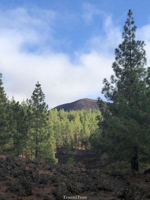 Hiken rondom Chinyero vulkaan