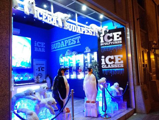 Ice Bar Boedapest