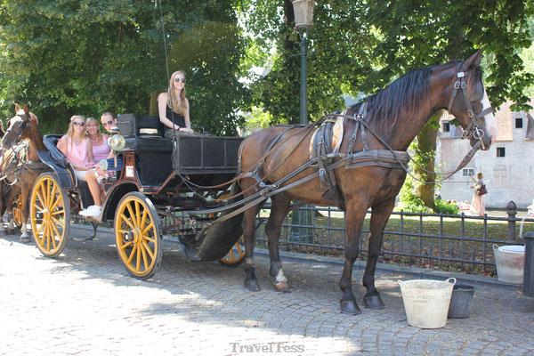 Ritje met paardenkoets in Brussel