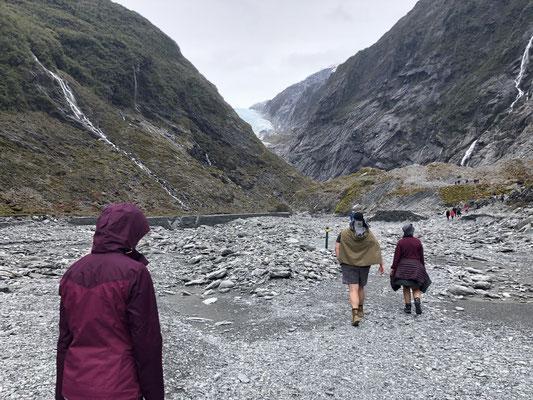 Franz Josef Valley Walk
