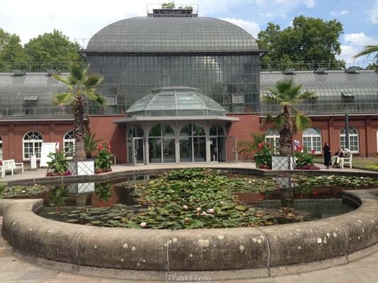 Bezoek aan Palmgarten Frankfurt