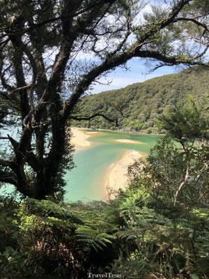 Uitkijkpunt Abel Tasman National Park