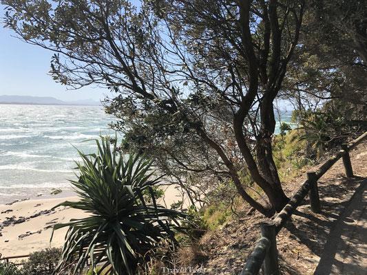 Badplaats Byron Bay