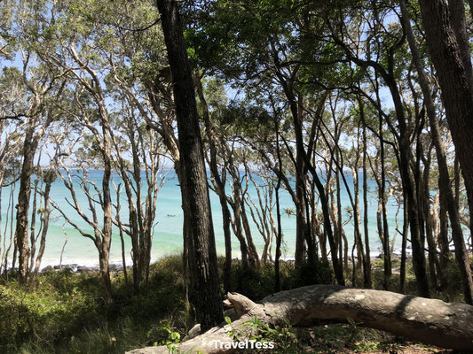 Parcours Noosa Beach Walk