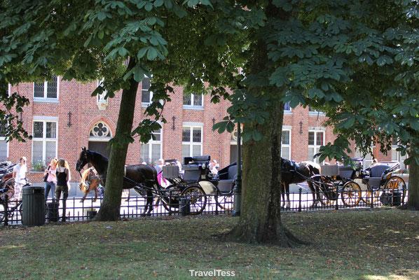 Ritje met de paardenkoets in Brugge