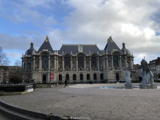 Mooi gebouw in Lille
