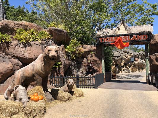 Tiger Island Dreamworld