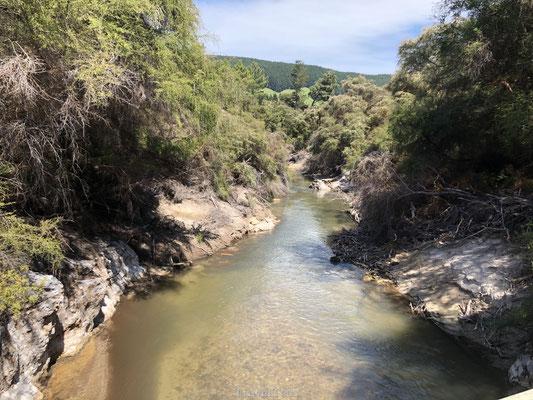 Rivier bij Rotorua