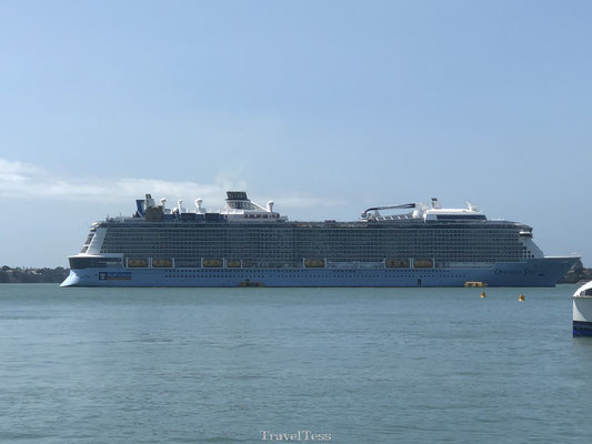 Gigantisch cruiseschip in Auckland