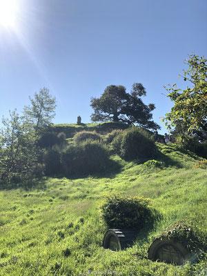 Groen Hobbit dorp